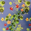 (C184-2) Growing Nasturtiums [blue ground]